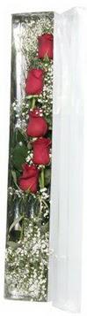 İstanbul Ümraniye çiçek siparişi sitesi   5 adet gülden kutu güller