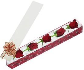 İstanbul Ümraniye internetten çiçek satışı  kutu içerisinde 5 adet kirmizi gül