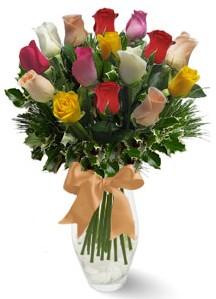 15 adet vazoda renkli gül  İstanbul Ümraniye internetten çiçek satışı