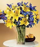 İstanbul Ümraniye anneler günü çiçek yolla  Lilyum ve mevsim  çiçegi özel