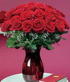 İstanbul Ümraniye çiçek online çiçek siparişi  11 adet Vazoda Gül sevenler için ideal seçim