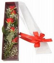 kutu içinde 5 adet kirmizi gül  İstanbul Ümraniye internetten çiçek siparişi
