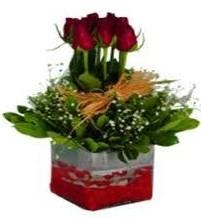İstanbul Ümraniye çiçek gönderme  7 adet mika yada cam vazoda gül tanzimi