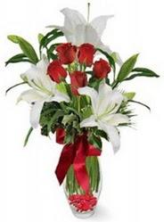 İstanbul Ümraniye çiçek siparişi vermek  5 adet kirmizi gül ve 3 kandil kazablanka