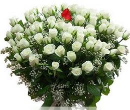 İstanbul Ümraniye internetten çiçek satışı  100 adet beyaz 1 adet kirmizi gül buketi