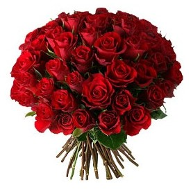 İstanbul Ümraniye çiçek , çiçekçi , çiçekçilik  33 adet kırmızı gül buketi