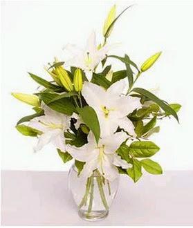 İstanbul Ümraniye çiçek gönderme  2 dal cazablanca vazo çiçeği