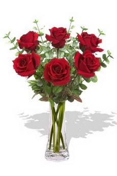 İstanbul Ümraniye çiçekçi mağazası  6 kırmızı gül vazosu