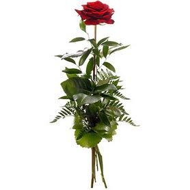 İstanbul Ümraniye online çiçekçi , çiçek siparişi  1 adet kırmızı gülden buket