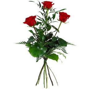 İstanbul Ümraniye uluslararası çiçek gönderme  3 adet kırmızı gülden buket