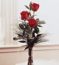 İstanbul Ümraniye internetten çiçek satışı  Vazoda 3 adet güzel gül