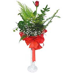 İstanbul Ümraniye anneler günü çiçek yolla  Cam vazoda masum tek gül