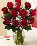 Sevgilime hediye 9 adet 1.ci kalite gül  İstanbul Ümraniye anneler günü çiçek yolla