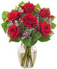 Kız arkadaşıma hediye 6 kırmızı gül  İstanbul Ümraniye internetten çiçek siparişi