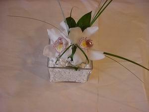 İstanbul Ümraniye çiçek servisi , çiçekçi adresleri  Iki adet kaliteli bir orkide