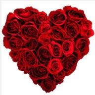 İstanbul Ümraniye uluslararası çiçek gönderme  19 adet kırmızı gülden kalp tanzimi