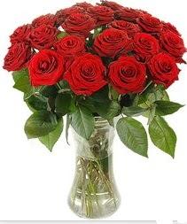 İstanbul Ümraniye çiçek mağazası , çiçekçi adresleri  Vazoda 15 adet kırmızı gül tanzimi