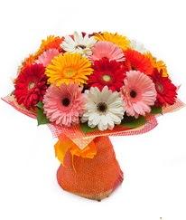 Renkli gerbera buketi  İstanbul Ümraniye anneler günü çiçek yolla
