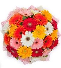 15 adet renkli gerbera buketi  İstanbul Ümraniye yurtiçi ve yurtdışı çiçek siparişi