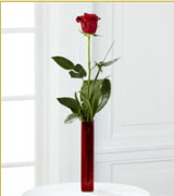 Vazo içerisinde 1 adet kırmızı gül  İstanbul Ümraniye internetten çiçek siparişi