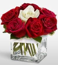 Tek aşkımsın çiçeği 8 kırmızı 1 beyaz gül  İstanbul Ümraniye uluslararası çiçek gönderme
