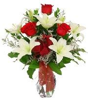5 adet kırmızı gül ve 1 dal kazablanka  İstanbul Ümraniye çiçek siparişi sitesi