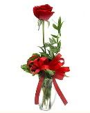 vazo içerisinde 1 adet kırmızı gül  İstanbul Ümraniye çiçekçi telefonları