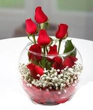 Cam fanus içerisinde 9 adet kırmızı gül  İstanbul Ümraniye çiçek siparişi vermek