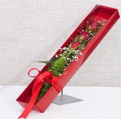 Kutu içerisinde 3 adet kırmızı gül  İstanbul Ümraniye online çiçek gönderme sipariş