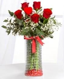 Cam vazoda 5 adet kırmızı gül kalp çubuk  İstanbul Ümraniye ucuz çiçek gönder