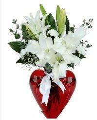 Kalp vazoda 3 kazablanka çiçeği  İstanbul Ümraniye İnternetten çiçek siparişi