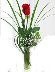 Cam içerisinde 1 kırmızı gül  İstanbul Ümraniye çiçek gönderme sitemiz güvenlidir