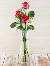 Cam içerisinde 3 kırmızı gül  İstanbul Ümraniye çiçek satışı