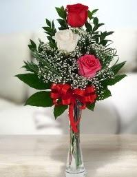 Camda 2 kırmızı 1 beyaz gül  İstanbul Ümraniye ucuz çiçek gönder