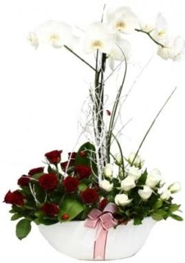 Tek dal beyaz orkide 8 beyaz 8 kırmızı gül  İstanbul Ümraniye çiçek satışı