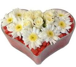 Kalp içerisinde 7 beyaz gül ve papatyalar  İstanbul Ümraniye internetten çiçek satışı