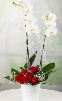 2 dallı beyaz orkide 7 adet kırmızı gül  İstanbul Ümraniye 14 şubat sevgililer günü çiçek