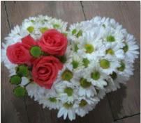 3 adet kırmızı gül mika kalptte papatyalar  İstanbul Ümraniye internetten çiçek satışı