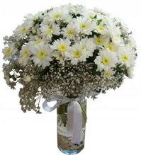 Vazoda beyaz papatyalar  İstanbul Ümraniye yurtiçi ve yurtdışı çiçek siparişi