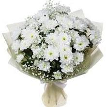 Papatya Buketi  İstanbul Ümraniye kaliteli taze ve ucuz çiçekler