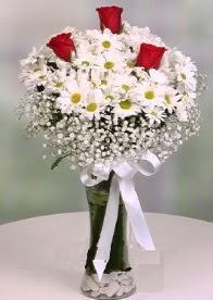 Cam içinde papatyalar 3 adet kırmızı gül  İstanbul Ümraniye anneler günü çiçek yolla