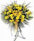 İstanbul Ümraniye yurtiçi ve yurtdışı çiçek siparişi  Sari kazablanka Ferforje