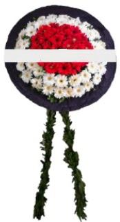 mozele çiçeği  İstanbul Ümraniye hediye sevgilime hediye çiçek