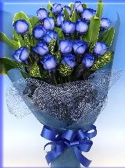 19 adet eşsiz mavi gül buketi  İstanbul Ümraniye uluslararası çiçek gönderme