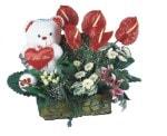 İstanbul Ümraniye yurtiçi ve yurtdışı çiçek siparişi  Lilyum ve oyuncakli arajman