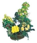 İstanbul Ümraniye çiçek siparişi vermek  Dal orkide, sari gül ve gerberalar