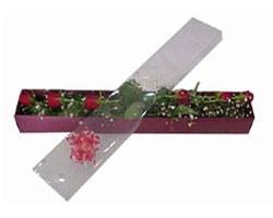 İstanbul Ümraniye anneler günü çiçek yolla   6 adet kirmizi gül kutu içinde