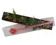 İstanbul Ümraniye hediye çiçek yolla  3 adet gül.kutu yaldizlidir.