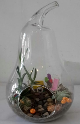 Orta boy cam armut terrarium  İstanbul Ümraniye çiçek satışı