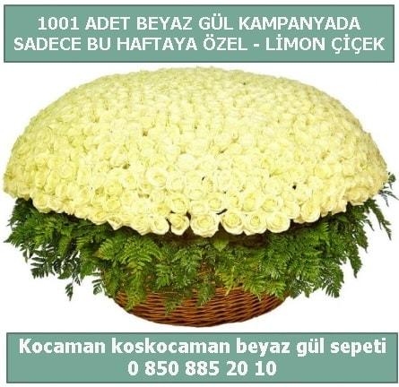 1001 adet beyaz gül sepeti özel kampanyada  İstanbul Ümraniye çiçek gönderme sitemiz güvenlidir